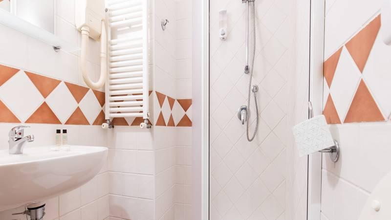 Hotel-Trastevere-Roma-Room-12-Double-Economy-Room-Bathroom-147